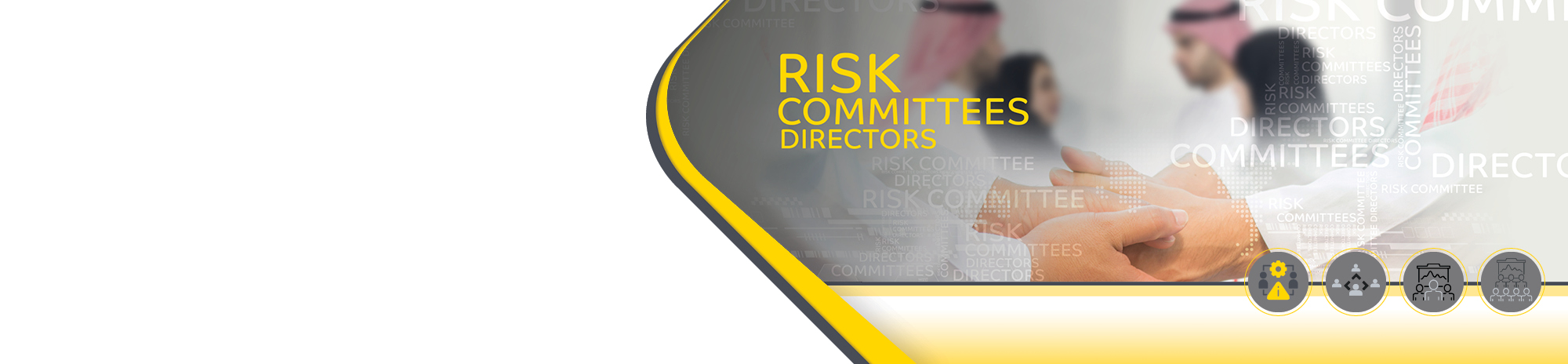 board risk committee-en